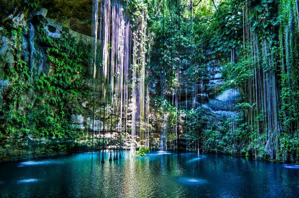 Magical Cenotes of the Yucatan